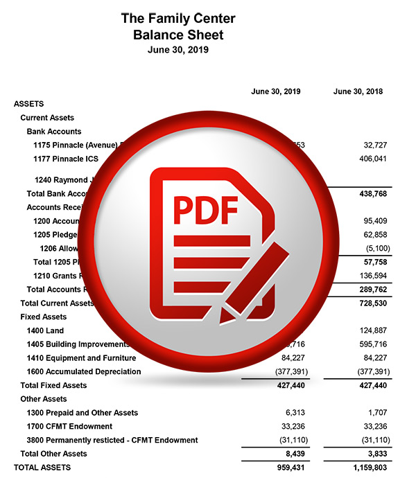 June 2019 Balance Sheet PDF